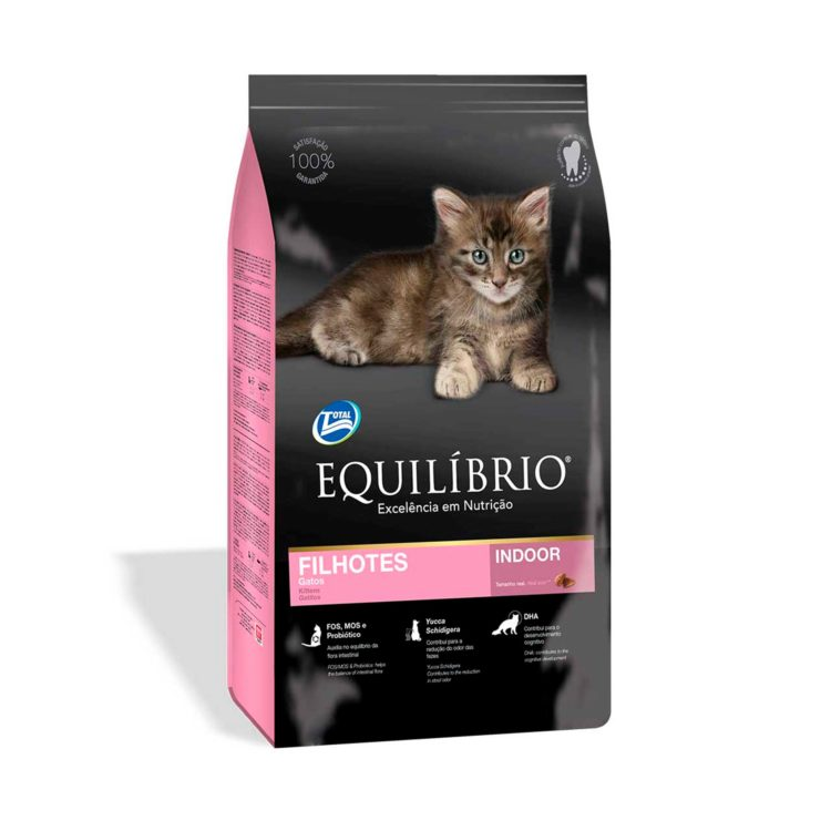 EQUILIBRIO KITTENS
