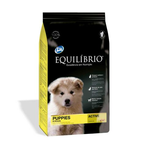 EQUILIBRIO PUPPIES ALL BREEDS
