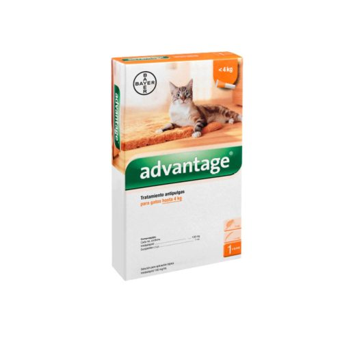 ADVANTAGE GATO 1 X 0.4 ML (0.4 KG)