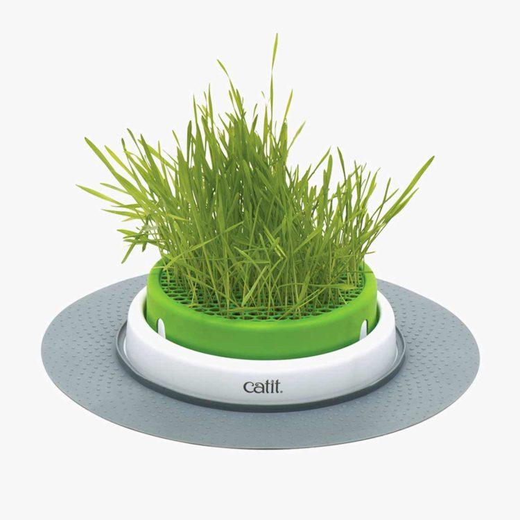 CAT IT SENSES 2.0 GRASS PLANTER (43161W.ES)