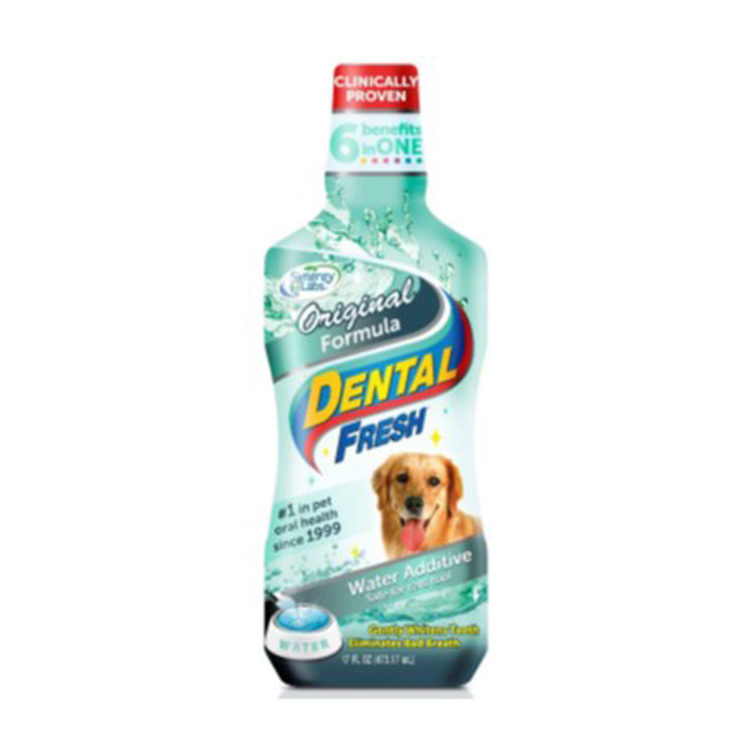 DENTAL FRESH ORIGINAL DOG