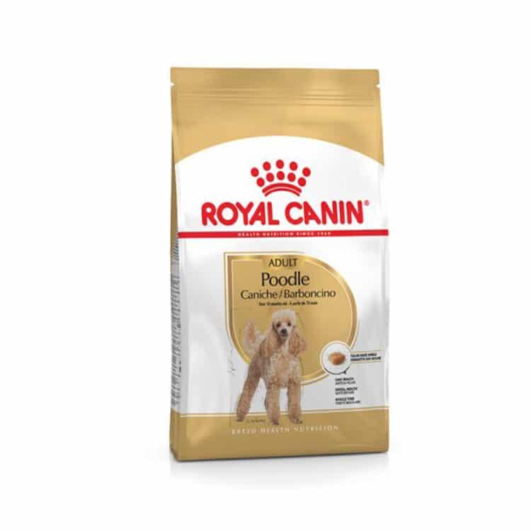 ROYAL CANIN BHN POODLE ADULT